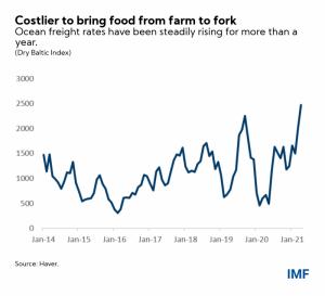 Observación de la inflación: cuatro hechos sobre el alza de los precios de los alimentos 104