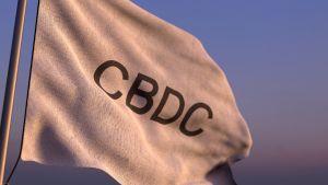 CBDC Shilling och Bitcoin Bashing kan nå G20-nivå 101