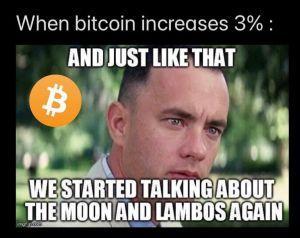Bitcoin Noobing, Asset Teasing and 20 Crypto Jokes