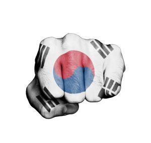 south korea regulatory blow