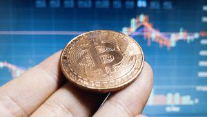 Institutional Players May Dominate Bitcoin Trading Within 3 Years - Report 101