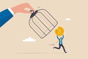 coin run