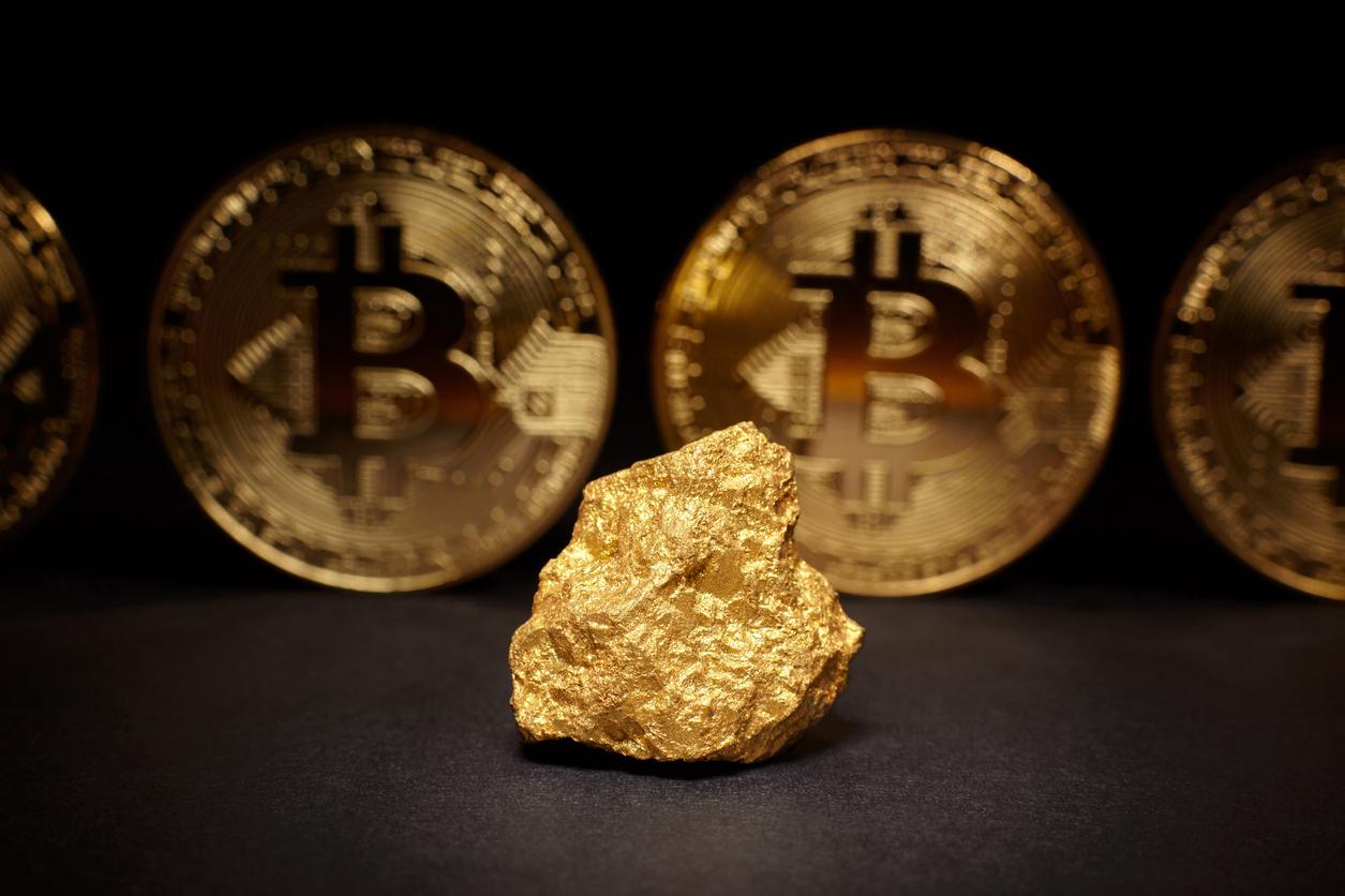 Le Bitcoin deviendra-t-il une alternative pérenne à l'or en tant que réserve de valeur ? 0001