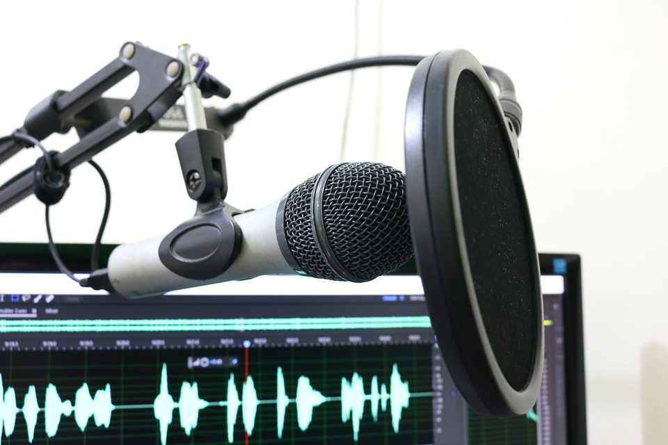 Podcast von Anita Posch - Episode 8 0001