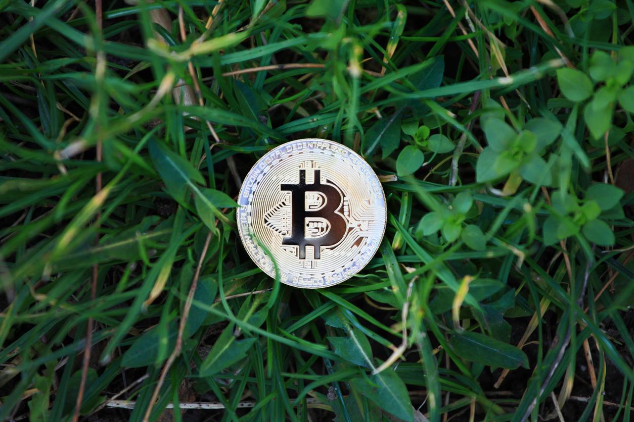 Le Bitcoin est-il trop cher ? 0001