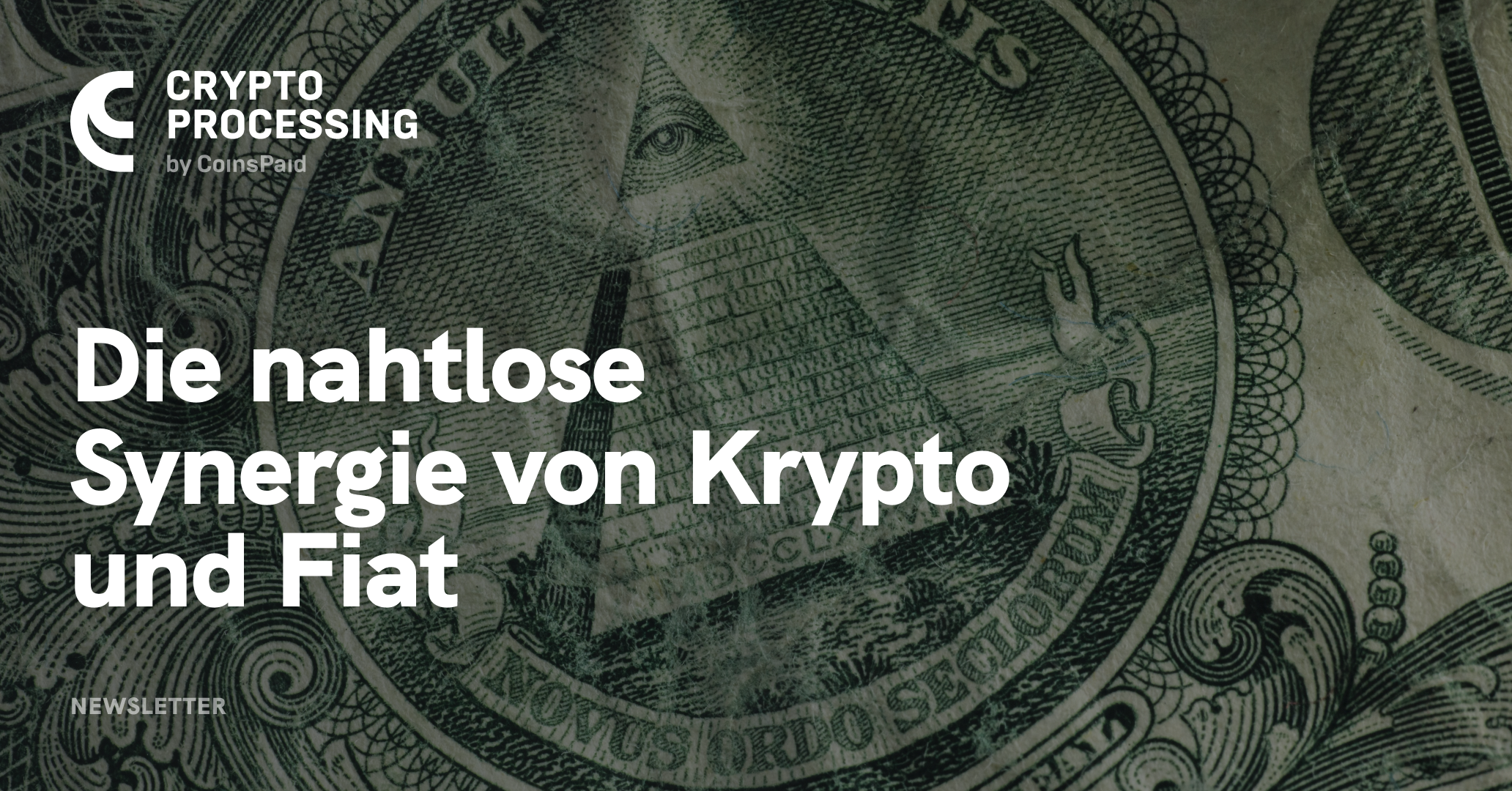 Cryptoprocessing.com: Vorreiter bei der Krypto-Fiat Integration 0001