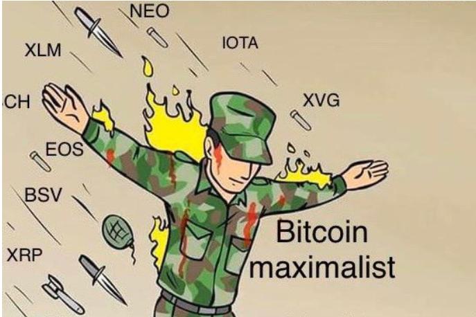 joke cryptocurrency price
