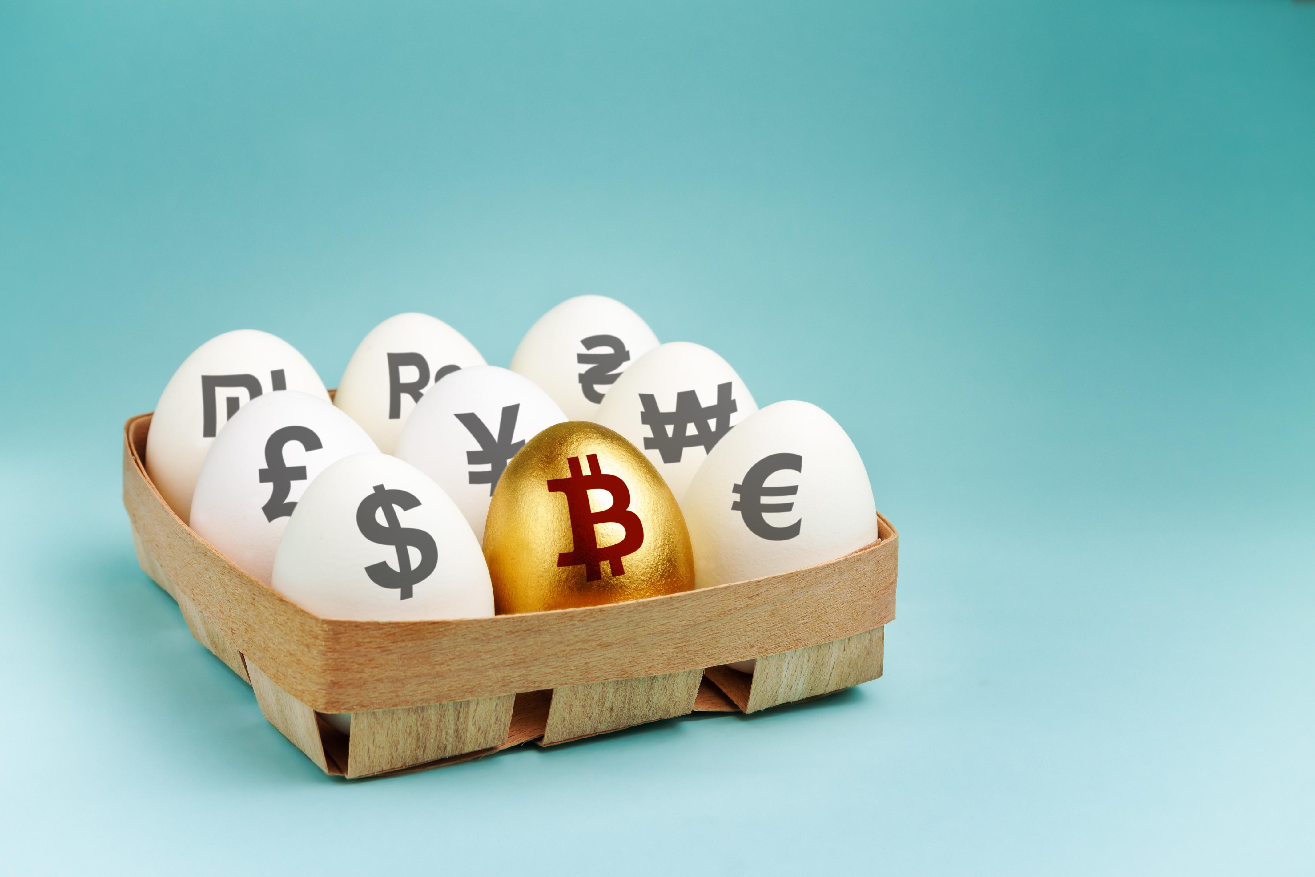Steve hanke bitcoins blaine t. bettinger genealogy