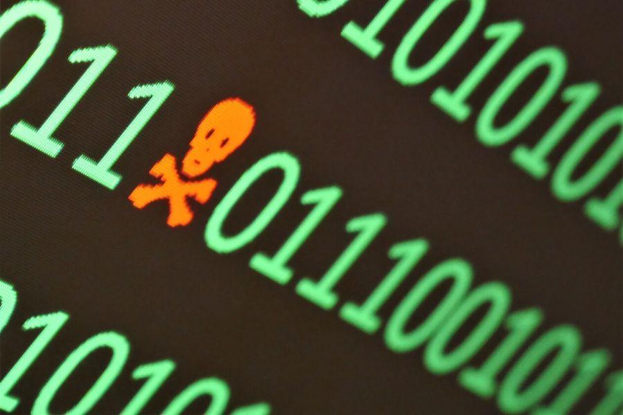 PAID Crashes on Alleged Massive Exploit News