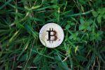 Le Bitcoin est-il trop cher ?