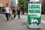 Les cryptos peuvent-elles aider l'industrie du cannabis?
