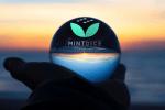 MintDice brengt nieuw speelgoed naar de Crypto Gaming-markt