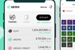 Gaming Giant Wemade Unveils Crypto Wallet App