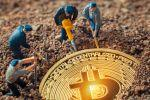 Bitcoin Rally Supported by More Busy Miners and Lower Fees