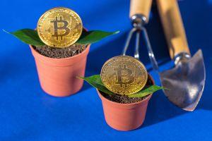 Top 3 BTC Sentiment Analysis Tools: How They Work & How to Use Them