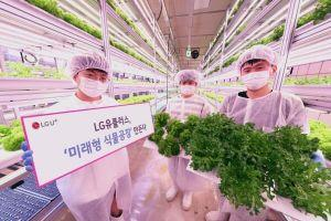 LG Shows off Blockchain-powered Farming System at Seoul Metro Station