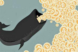 US Government Is Now Top Bitcoin Whale. What Could Happen Next?