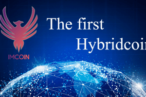 IMCoin Revolutionizes The Market With a New Concept: Hybridcoin