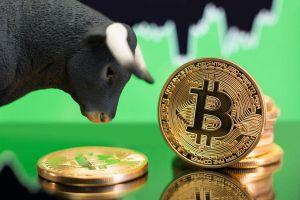 Bitcoin Breaches USD 16,000 For The First Time Since January 2018