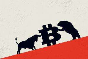 Bitcoin Bulls and Bears List Reasons Why Price Will Rise or Drop by 2030