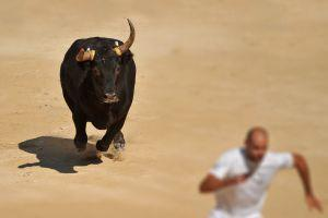 Not Only Bitcoin Price Is Changing During This Bull Run