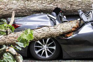 BMW, Ford, Honda to Co-work on Blockchain-powered Car Damage History Platform