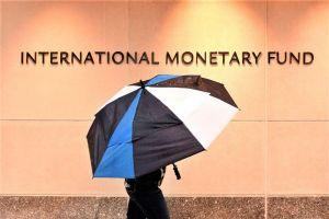 IMF Says Higher Rates Might Reduce Appetite for Risk. And Bitcoin?