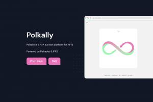 Polkally Successfully Raises $700k USD, Starts Public Dual IDO