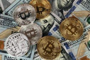 What to Do When Bitcoin Has a Price Crash