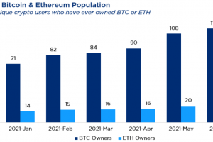 Estimated Number of Crypto Users Reaches 221M, Spurred by Altcoins