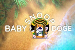 BabySnoopDoge, The Biggest Charity-Based Memecoin For Marijuana