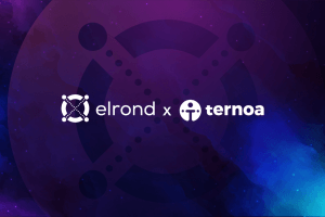 Ternoa Expands NFT Time Capsules' Compatibility Partnering with Elrond