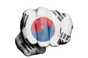 All of South Korea's Crypto Exchanges Fail their Regulatory Audits