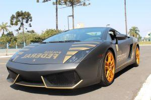 Confiscated Lambo Utilised for Education, Crypto Donations for Animals + More News
