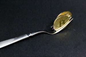 bitcoin forks guide