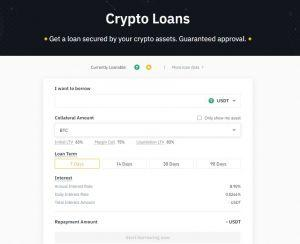 Binance review crypto loans