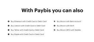 Paybis review info