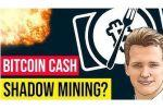 Will Bitcoin Cash Survive? Fork Aftermath