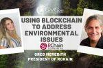 Using Blockchain Technology to Address Environmental Issues